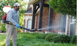 Mosquito Control Dallas