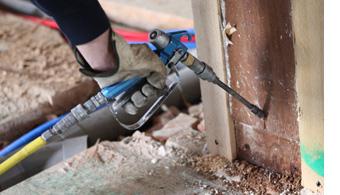 dallas county termite control